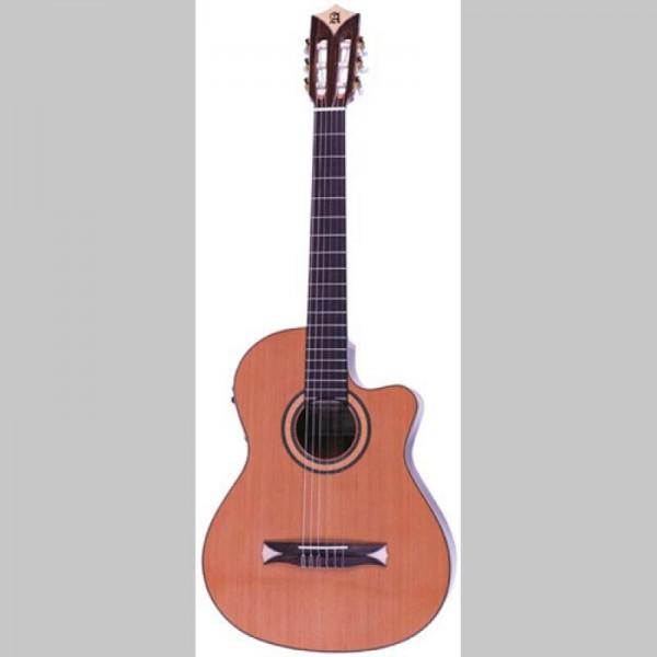 guitare electro acoustique cordes nylon alhambra cs1 cw. Black Bedroom Furniture Sets. Home Design Ideas