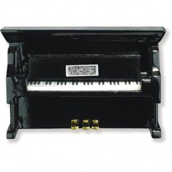 piano magnetic