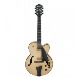 IBANEZ CONTEMPORARY ARCHTOP AFC95 NTF