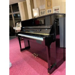 SCHIMMEL 116T TRADITION OCCASION